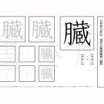 小学6年 漢字書き順プリント【臓】