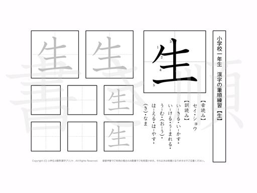 小学1年生で学習する80字の漢字のうち「生」を掲載しています。正しい書き順と読み方を、無料漢字プリントを使ってしっかり覚えておきましょう。